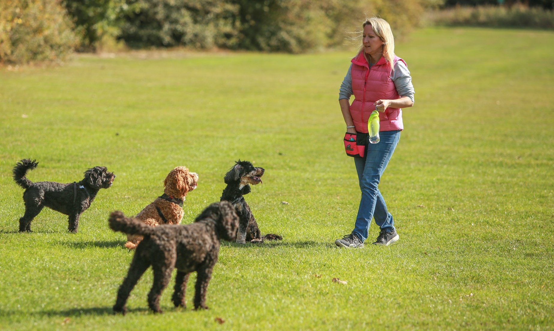 Diane Kasperowicz Dog Trainer and Behaviour Counsellor.jpg