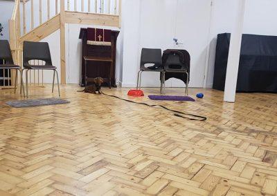 The Welsh Chapel Clapham Puppy Classes